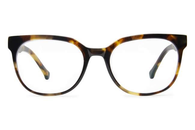 Kelvin eyeglasses in whiskey tortoise viewed from front